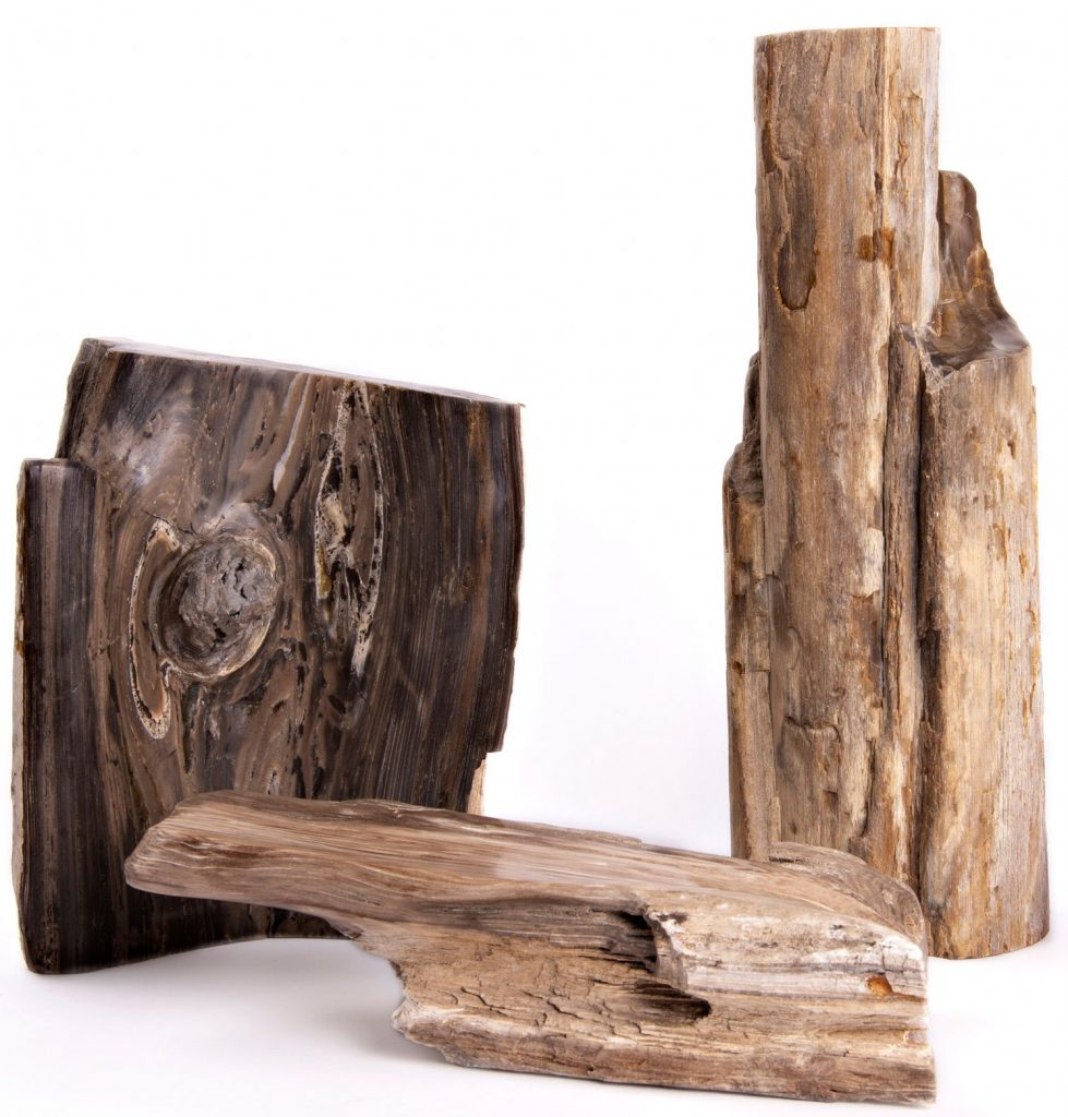 Petrified Wood Sculpture Group