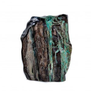 Petrified Wood with Chrysocolla & Malachite