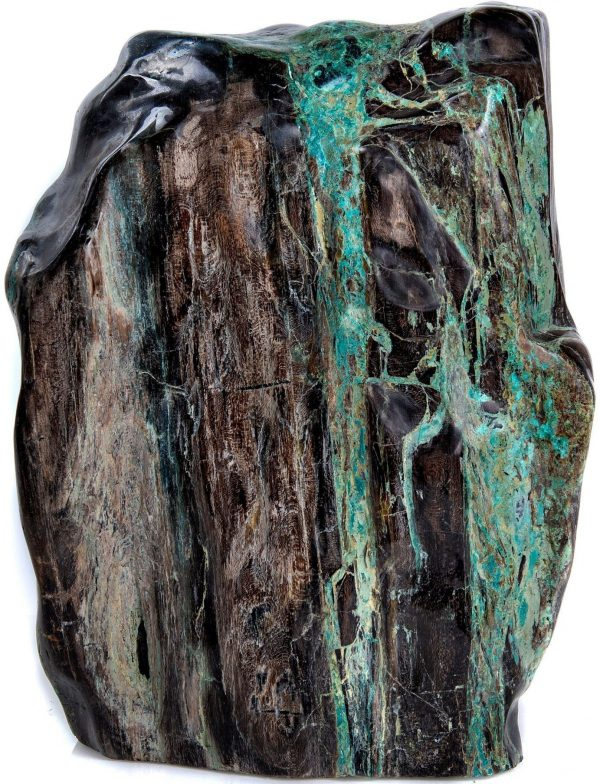 Petrified Wood with Chrysocolla & Malachite